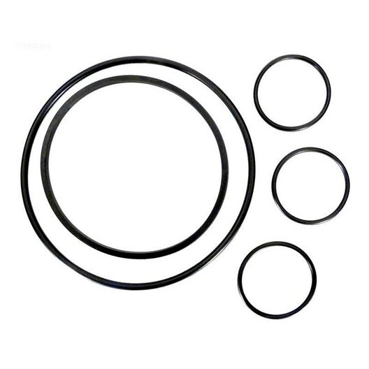 Hayward  O-Ring Kit All O-Rings on Strainer and Filter