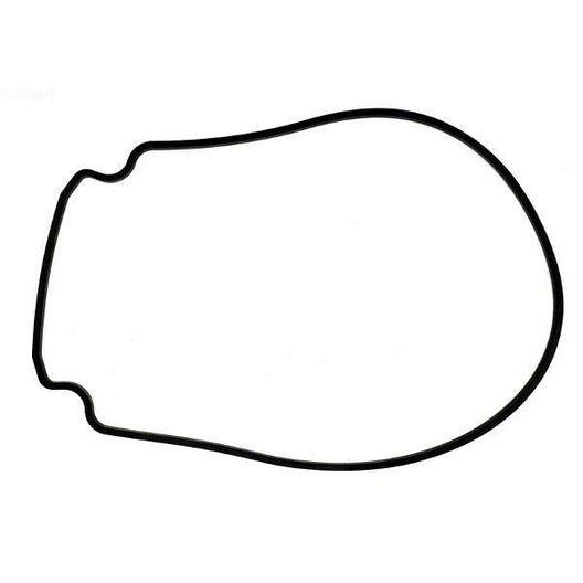 Pentair  Gasket Seal Plate to Housing for IntelliFlo/IntelliFlo VS
