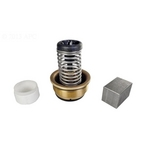 Bypass Valve Kit for Max-E-Therm/MasterTemp ASME