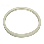 Gasket, for Lens OEM Intellibrite, White