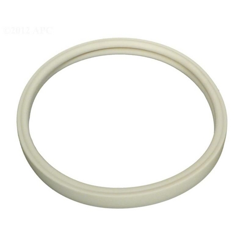 Pentair - Gasket, for Lens OEM Intellibrite, White