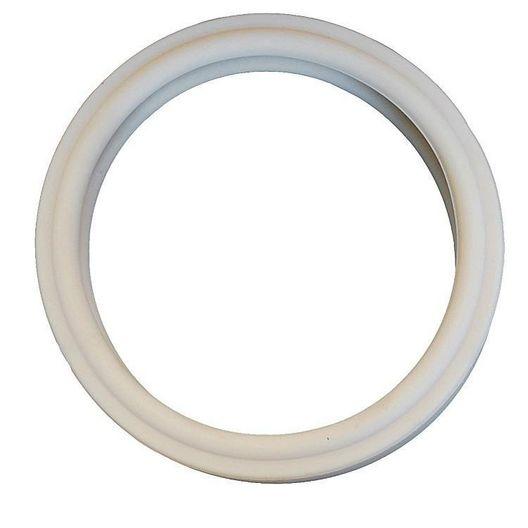 Pentair - Gasket, Lens - 64505