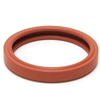 ColorSplash Silicone Spa Light Gasket
