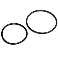 Aladdin Equipment Co - Pro-Grid O-ring Kit (Set of 2) Swim Clear Repl. Hayward DEX2420Z8A
