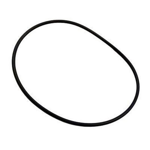 Hayward  Body O-Ring