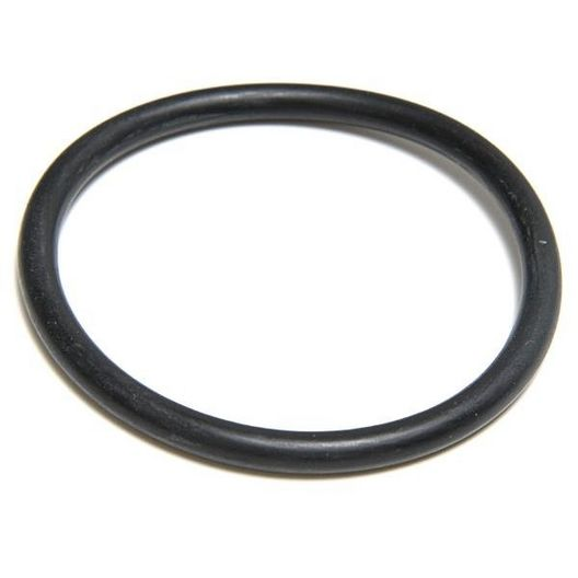 O-Ring for SwimClear C2030, C3030, C4030, C5030, C7030
