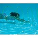 Swimline  Swim-Through Pool Hoops