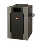 009216 Digital Natural Gas 206,000 BTU Pool Heater