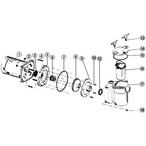 Anthony Centrifugal Pump Pump - 80d47d0f-22b4-4d9d-aa26-3a8b7e8999f9