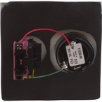 Pentair - Shut Off Switch with Alarm, Double Plate - 84178