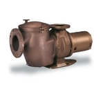 011653 C-Series 7-1/2 HP 3-Phase Commercial Bronze Pump with Strainer