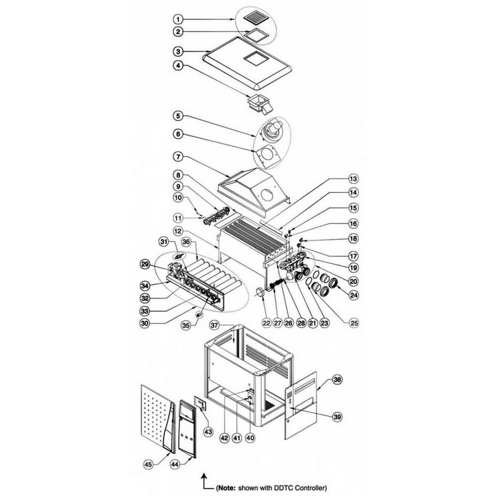 Pentair Heater MiniMax NT Series MiniMax NT TSI: w/DDTC Controller image