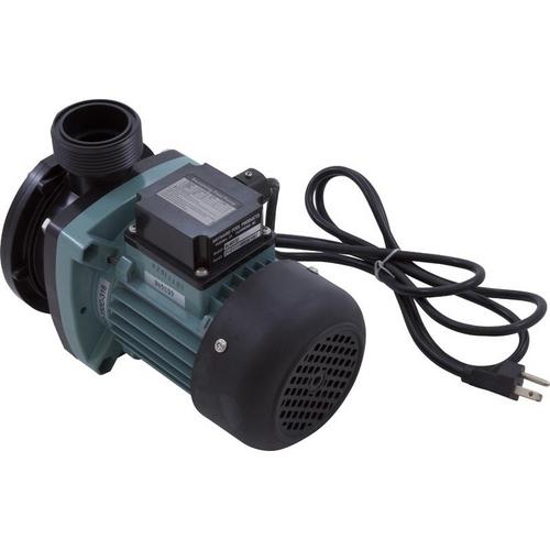 Hayward - Pump without Strainer