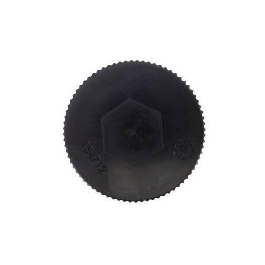 Pentair  Drain Cap