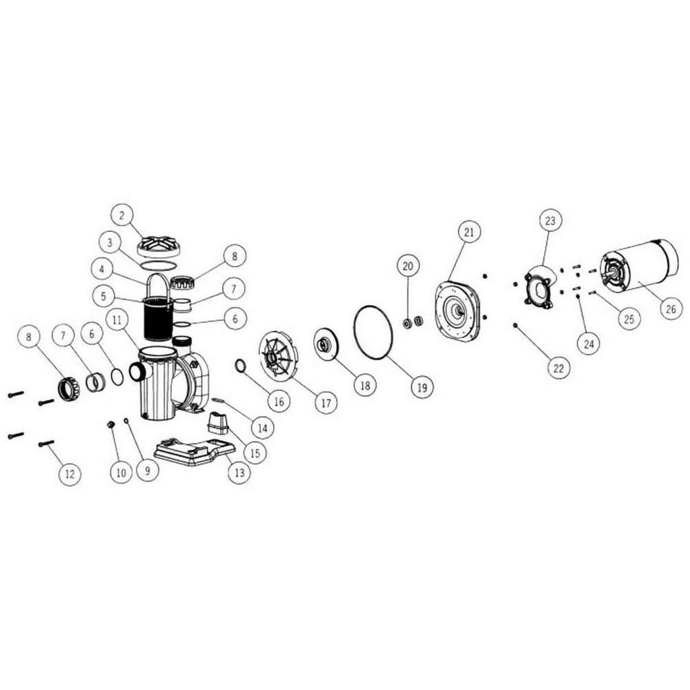 Astral Sena In-Ground Pump image