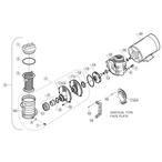 Pentair Maxim Pump - a7ee7438-2032-4598-a4d3-dcad8e4090e1