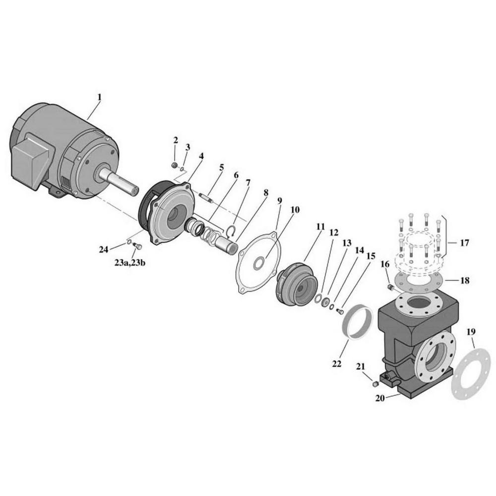 Sta-Rite CSPH/CCSPH Series - Centrifugal Pump image