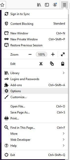 Screenshot of the Options menu.
