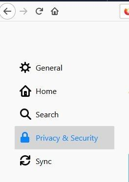 Screenshot of the Privacy section.