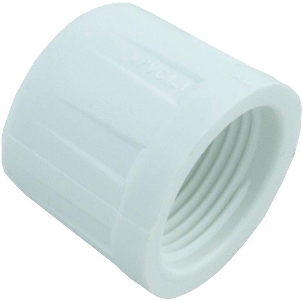 Plumbing Supplies Caps FPT Caps image