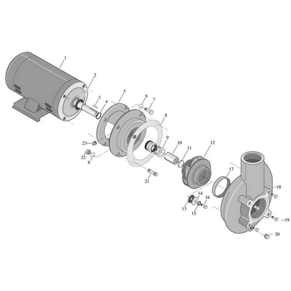 Sta-Rite CC/C Series - Centrifugal Pump image