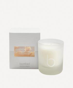 Candied Orange Single Wick Candle 140g