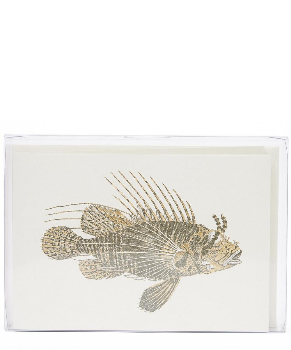 Rossi 1931 - Scorpion Fish Notecards