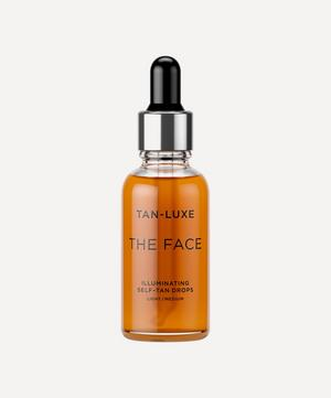 The Face in Light to Medium 30ml