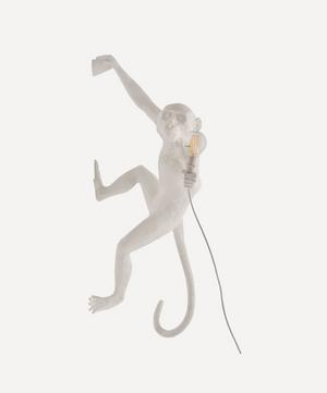 Hanging Outdoor Monkey Lamp