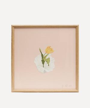 Tulip and Shell Framed Artwork