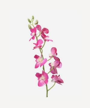 Glitter Orchid Stem