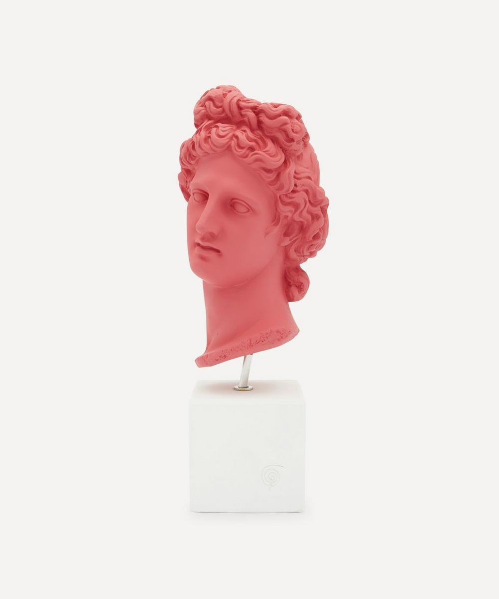 Sophia Enjoy Thinking - Medium Apollo Head