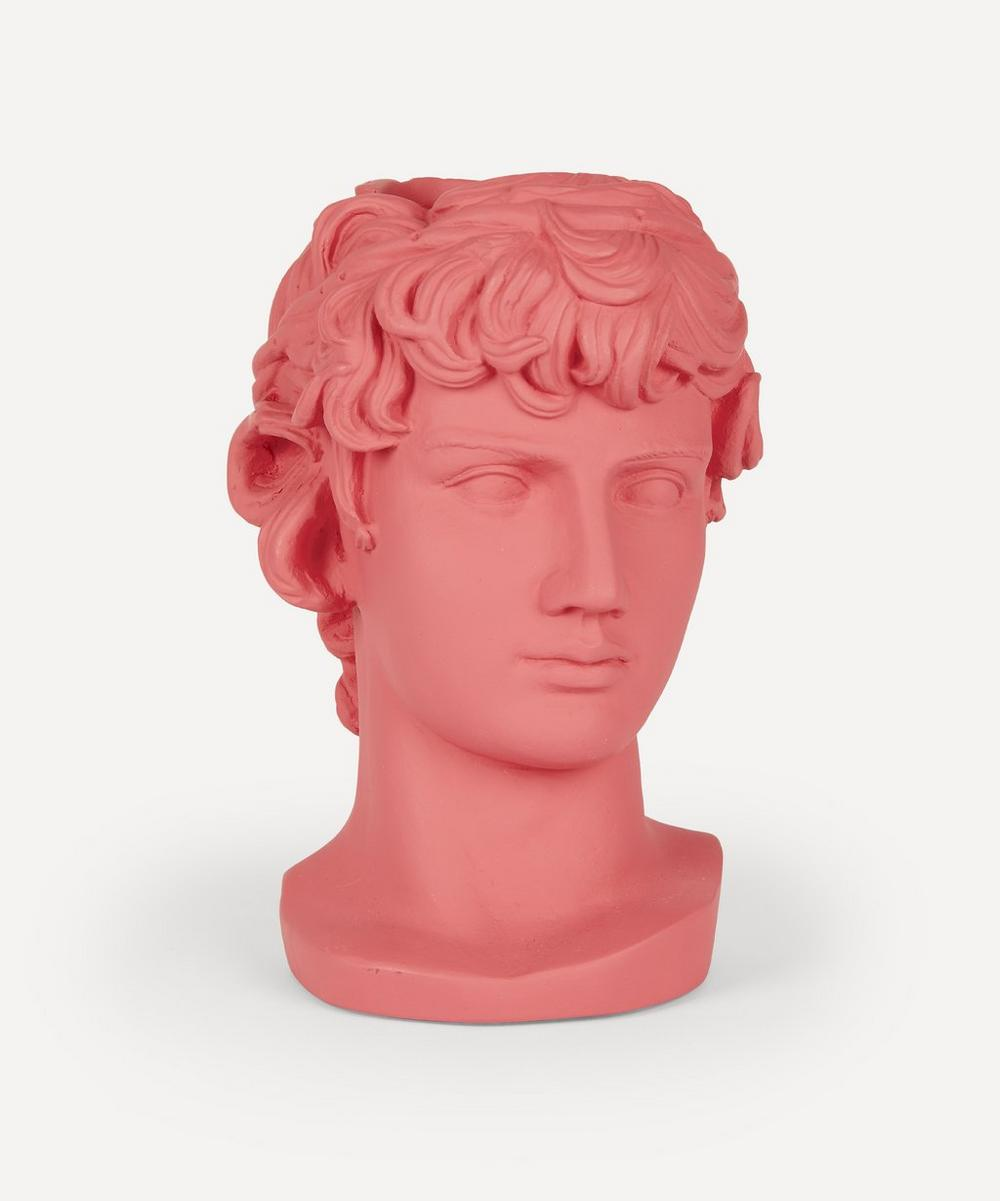 Sophia Enjoy Thinking - Antinous Head Vase