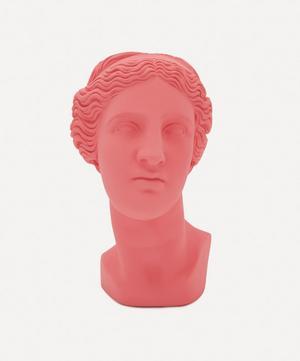 Venus Head Vase