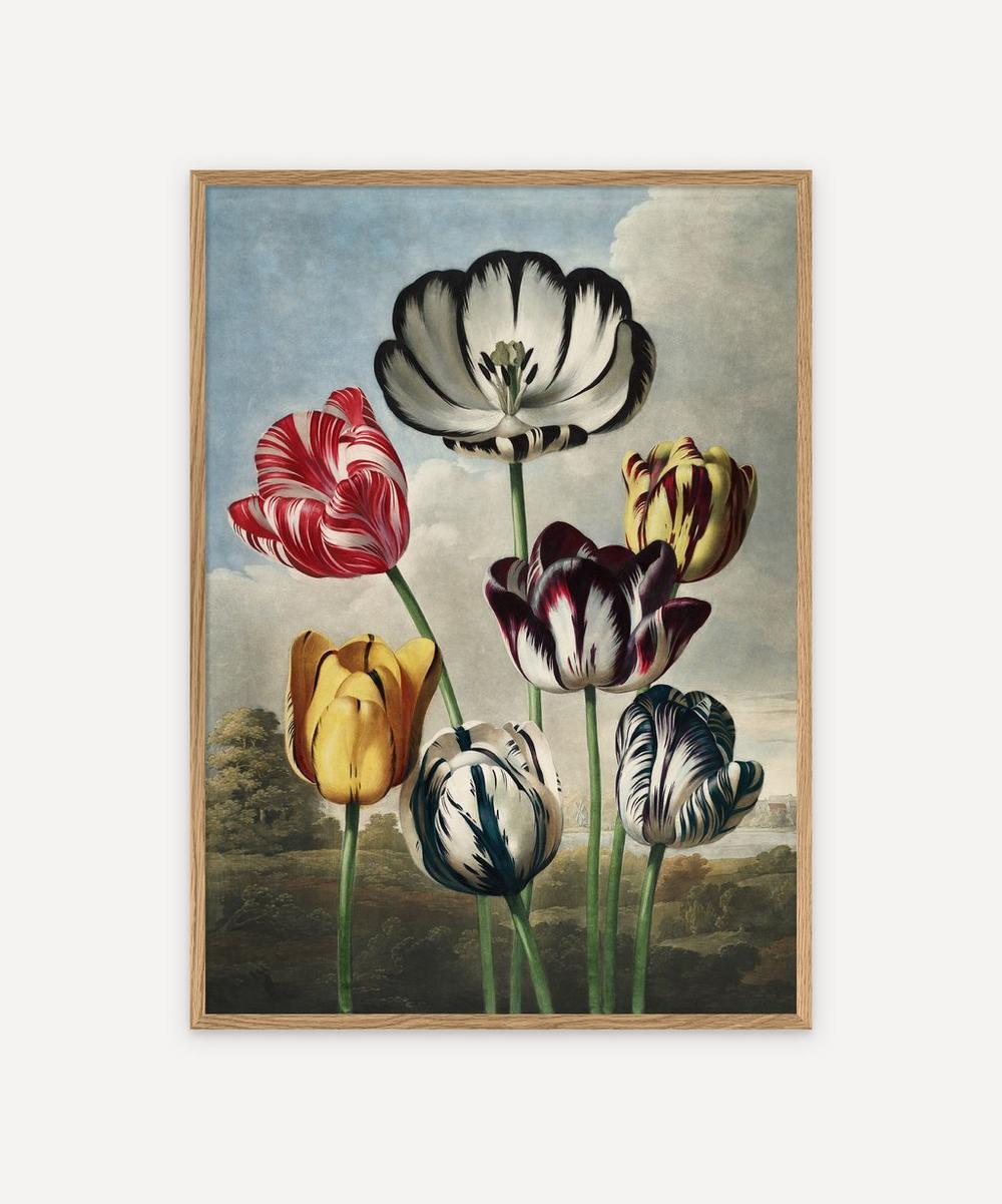 The Dybdahl Co. - Tulips Framed Print