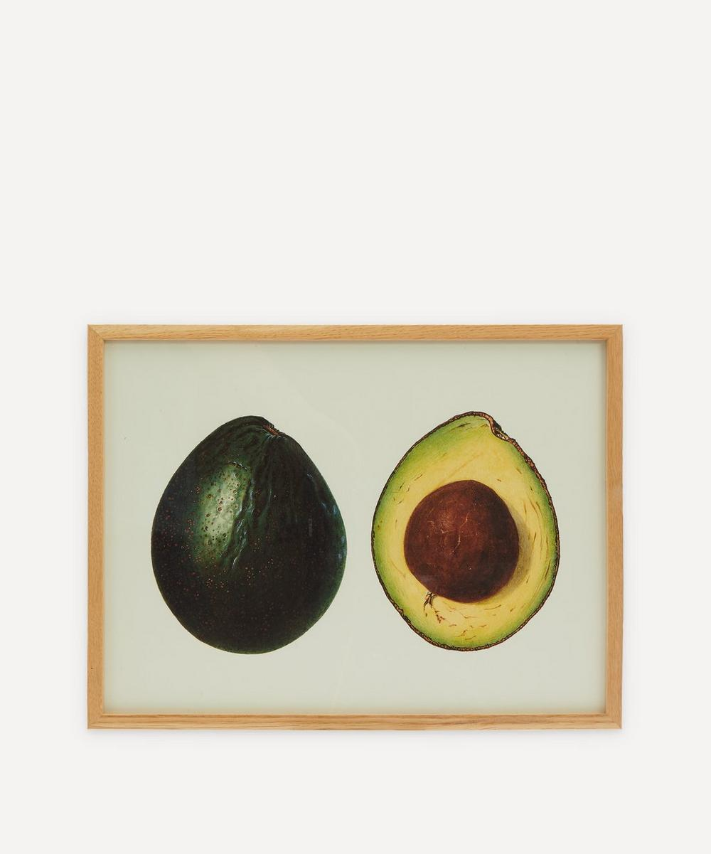 The Dybdahl Co. - Avocado Framed Print