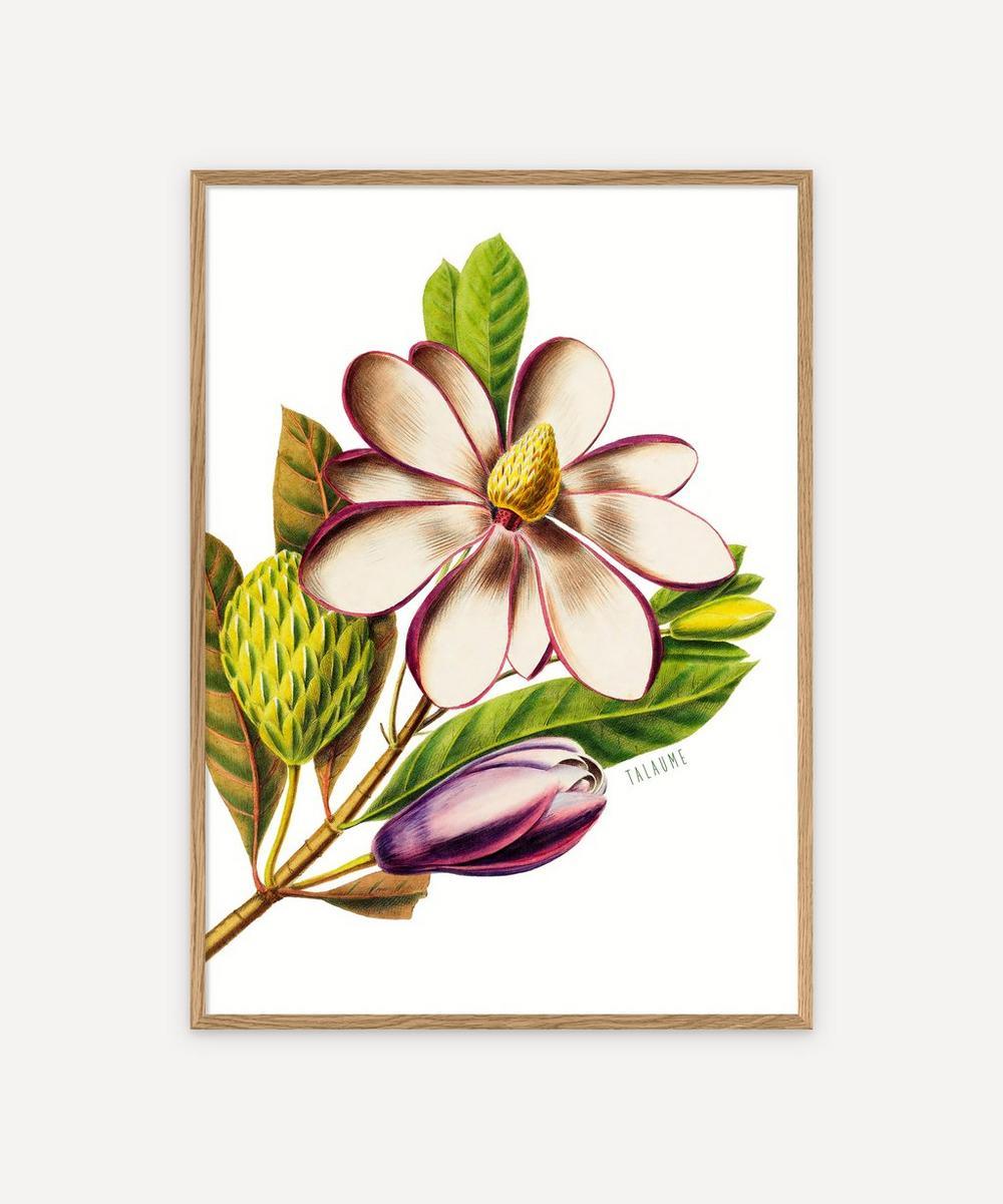 The Dybdahl Co. - Talaume Framed Print