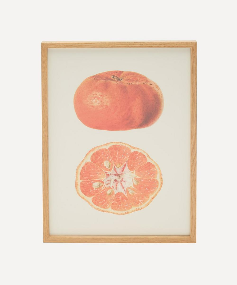 The Dybdahl Co. - Mandarine Framed Print