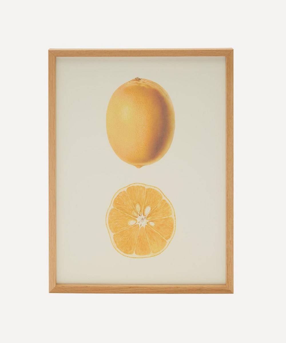 The Dybdahl Co. - Lemon Framed Print