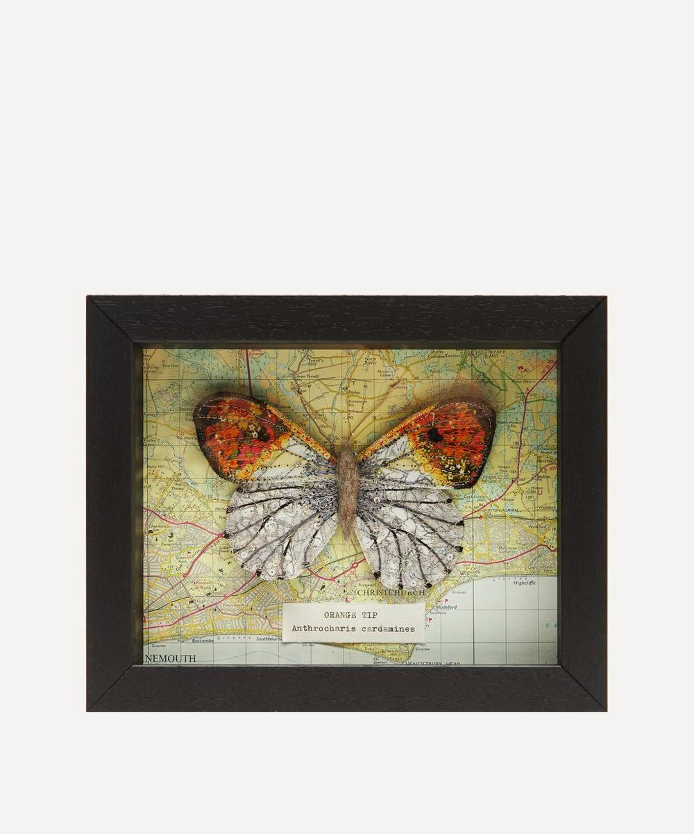 Heather Everitt - Orange Tip Embroidered Butterfly Framed
