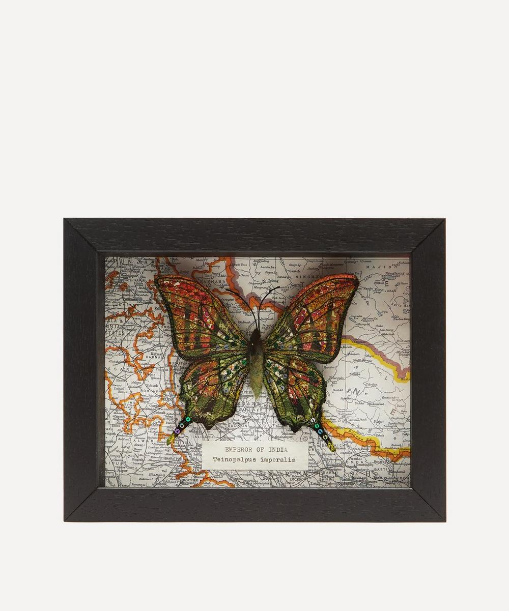 Heather Everitt - Emperor of India Embroidered Butterfly Framed