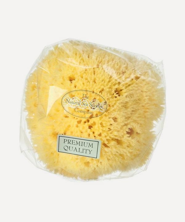 Hydréa London - Small Honeycomb Natural Sea Sponge