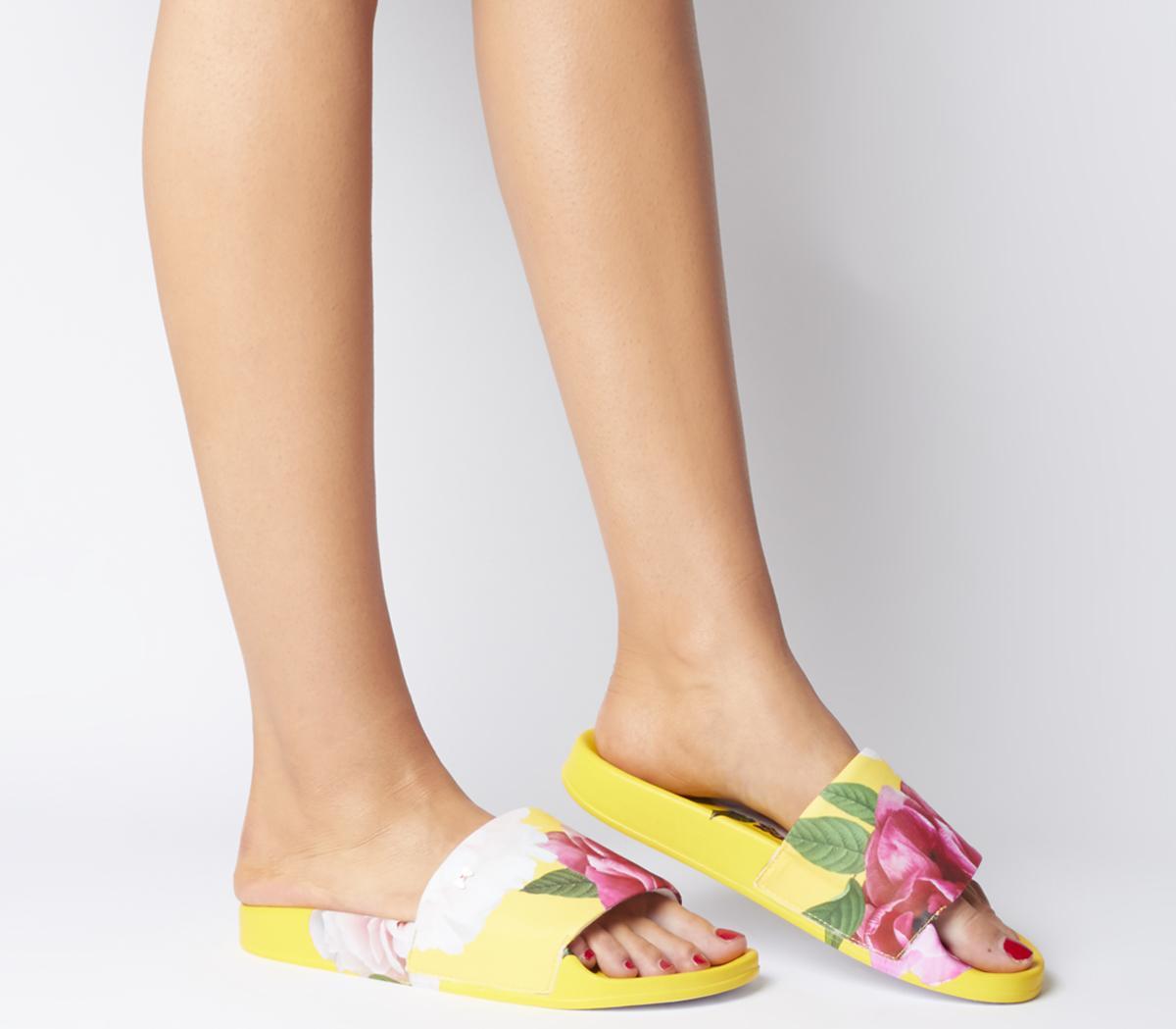 Avelini Slides