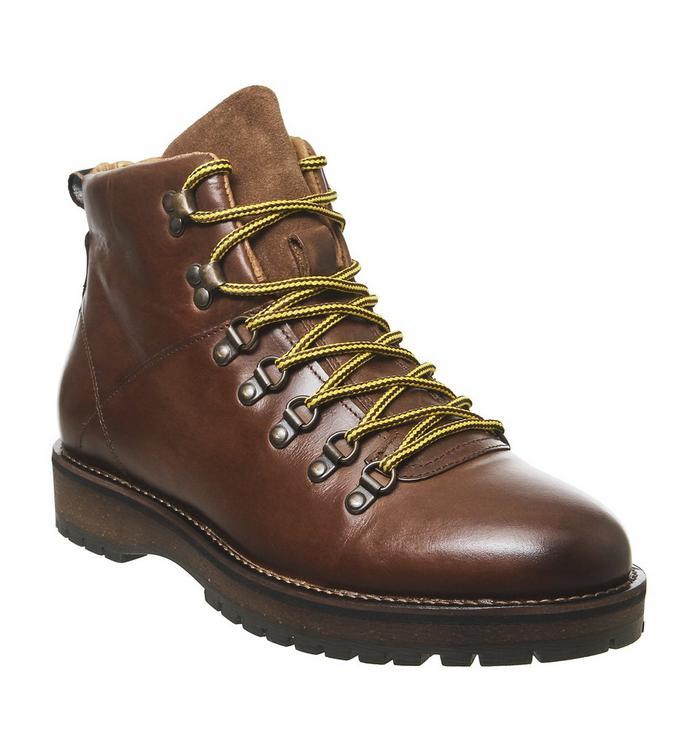 Shoe the Bear Shoe the Bear Lawrence L TAN