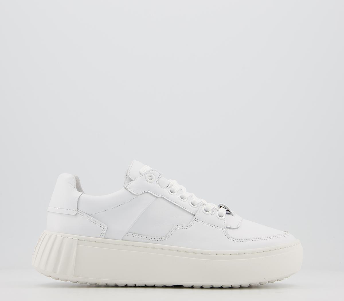 Frank Trainers