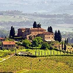 Italian Stallions Wine Club 3 Bottles