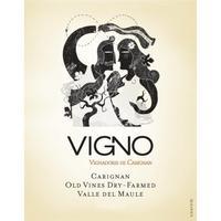 Alcance 2014 Vigno, Carignan Old Vines, Dry Farmed, Maule Valley