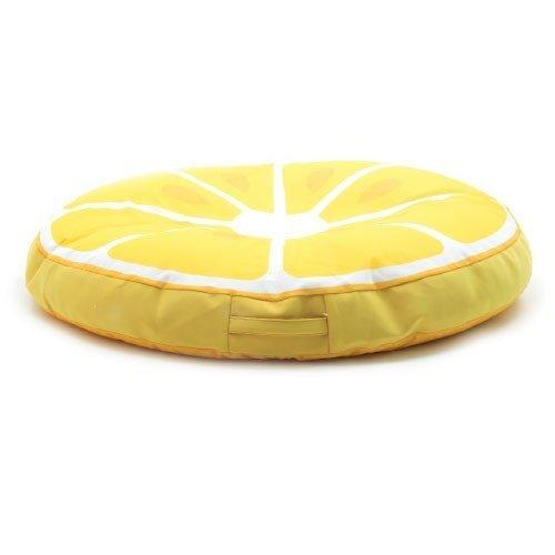 Big Joe Fruit Slice Float Lemon