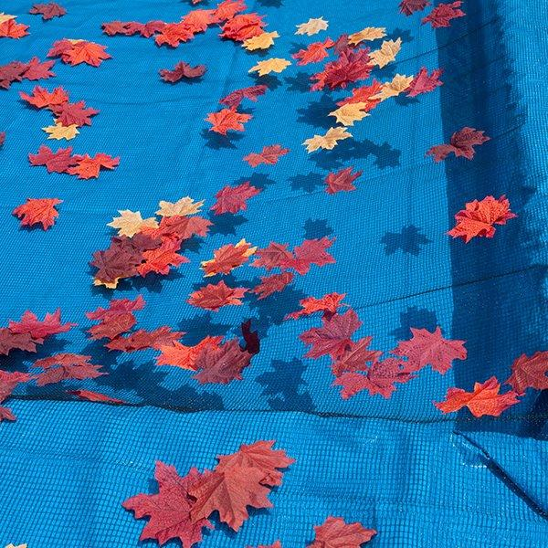30 X 50 Rectangle Pool Leaf Cover