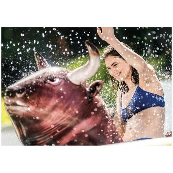 Intex Inflat A Bull Pool Rider